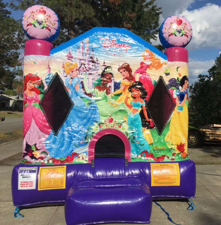 Disney Princess Toddler Bouncer