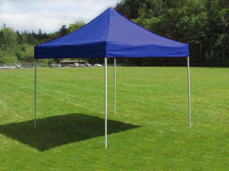 Face Painter Tent