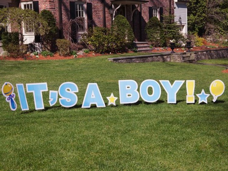 Newborn - It's A Boy - Yard Art