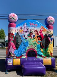Mini Disney Princess Bouncer