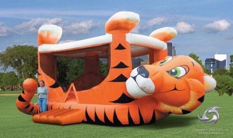 Tiger Belly Jumper